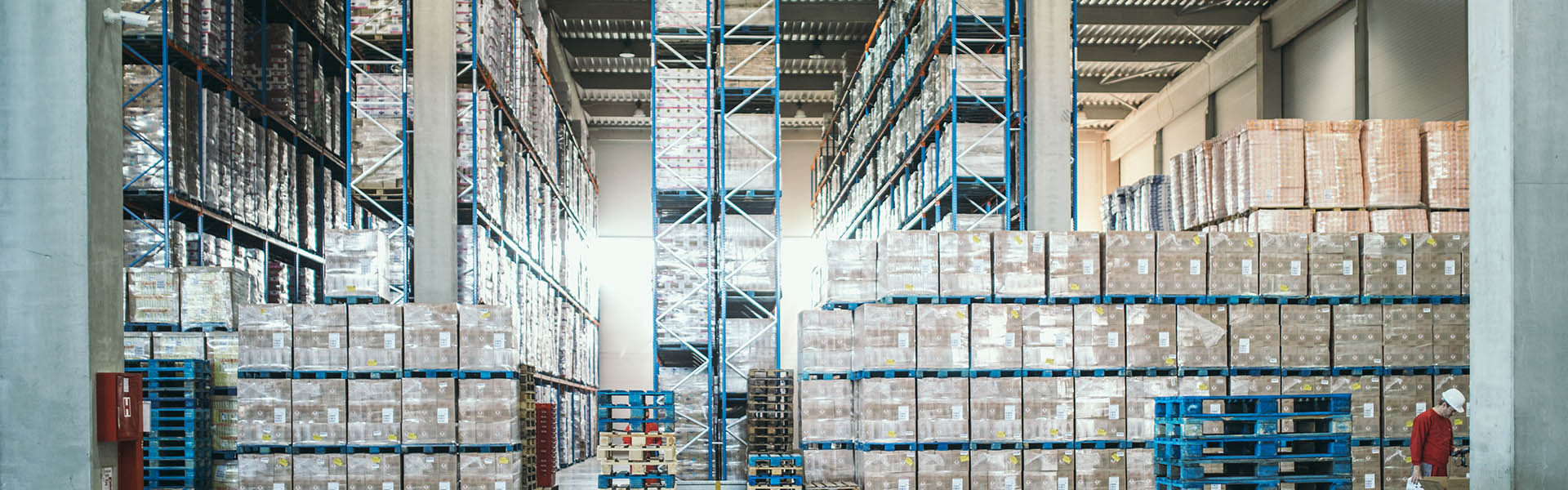SAP Extended Warehouse Management (EWM)